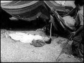La Guerre d'Algérie en images Guelma-setif-massacre4