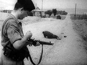 La Guerre d'Algérie en images Img03