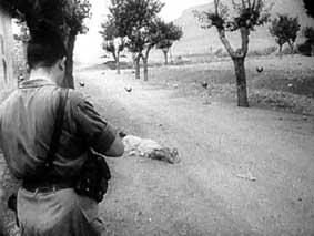 La Guerre d'Algérie en images Img05