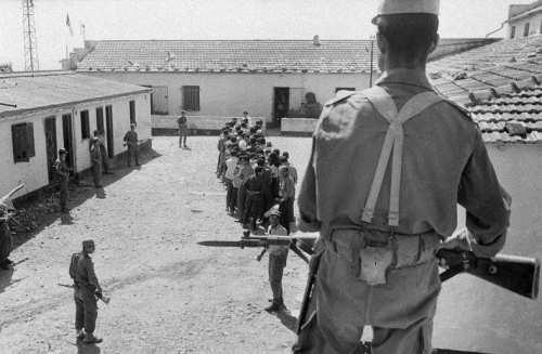 La Guerre d'Algérie en images Camps-d-internement-ALN-Oran