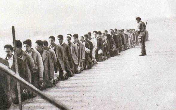 La Guerre d'Algérie en images Prisonniers2