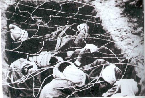 La Guerre d'Algérie en images Prisonniers3