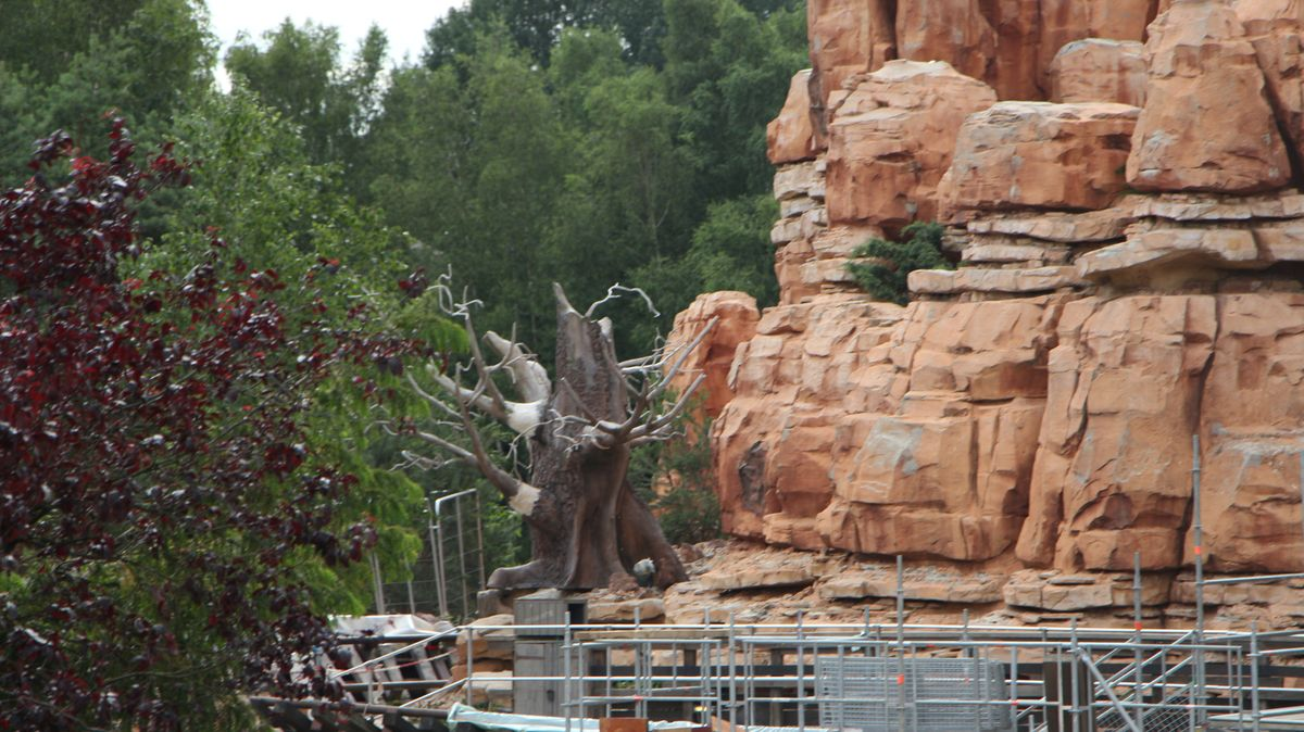 Réhabilitation de Big Thunder Mountain (du 2 novembre 2015 au 16 décembre 2016) - Page 38 IMG_9055-Copie