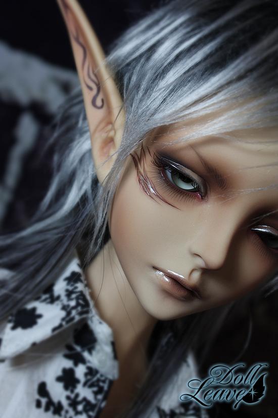 Doll-Leaves : New boy Evan + Wheat Skin 2012031711432977