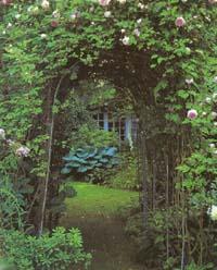 50 korisnih savjeta za uređenje vrta Pergola