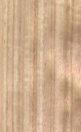 Choix de bois pour entourage jardin Eucalyptus-bois-de-fil
