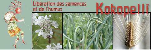 Kokopelli et la biodiversité végétale Kokopelli