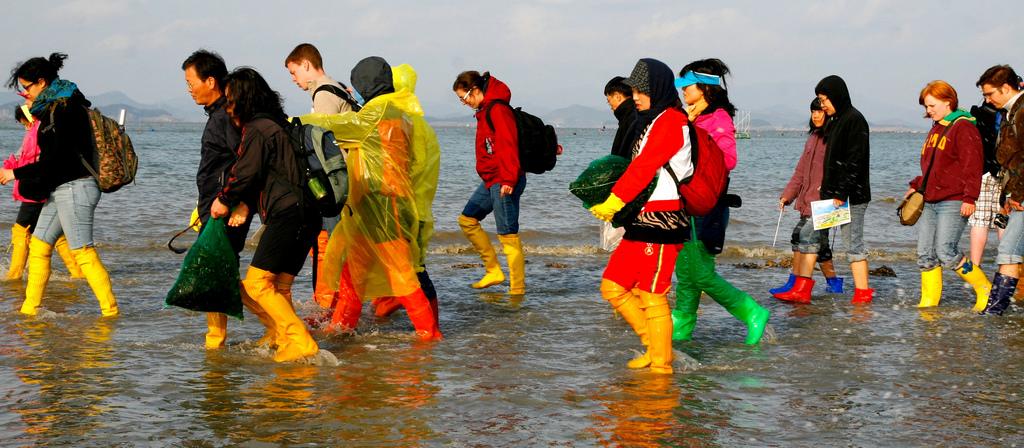 في كوريا:مهرجان لإنشقاق البحر {معجزة نبي الله موسى} Boots