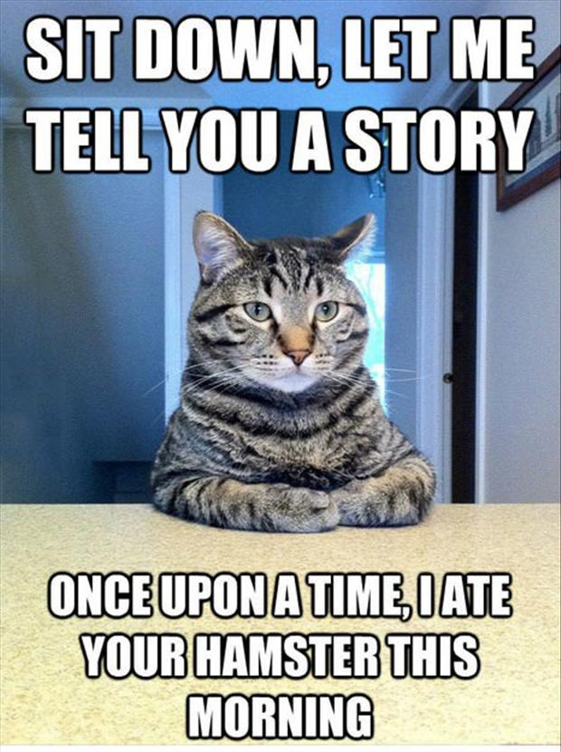 Funny/Cute Animal Pics - Page 2 Cat-sitting-at-the-table-funny-cat-quotes