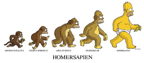 Humour proverbe et citation Homer-sapien