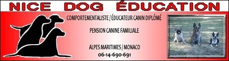Educateur comportementaliste canin 06 et 83 / Pension familale 60683470nicedo11-jpg