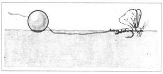 Книга: Голавль и жерех. Все способы ловли 145871-i_003