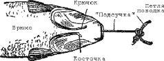 Книга: Крючковые рыболовные снасти 89484-i_007