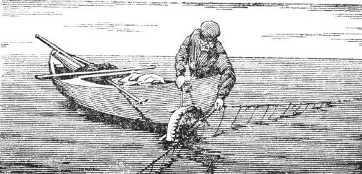 Книга: Крючковые рыболовные снасти 89484-i_013