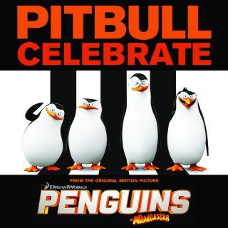 Pitbull - Celebrate Pitbull_celebrate.jpg___th_320_0
