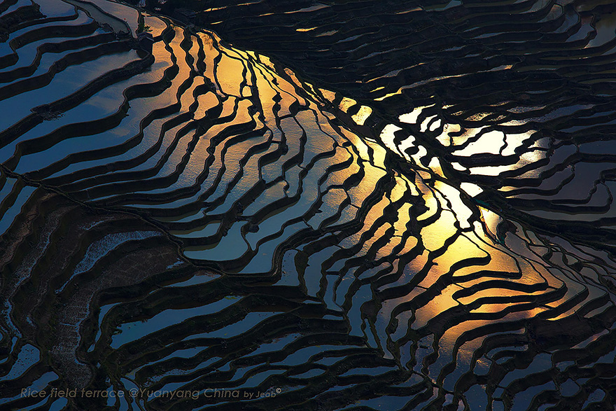 24 Entrancing Rice Fields That Resemble Broken Glass Terraced-rice-fields-10__880