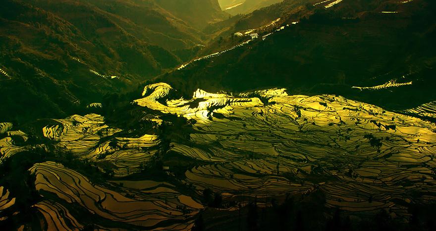 24 Entrancing Rice Fields That Resemble Broken Glass Terraced-rice-fields-13__880