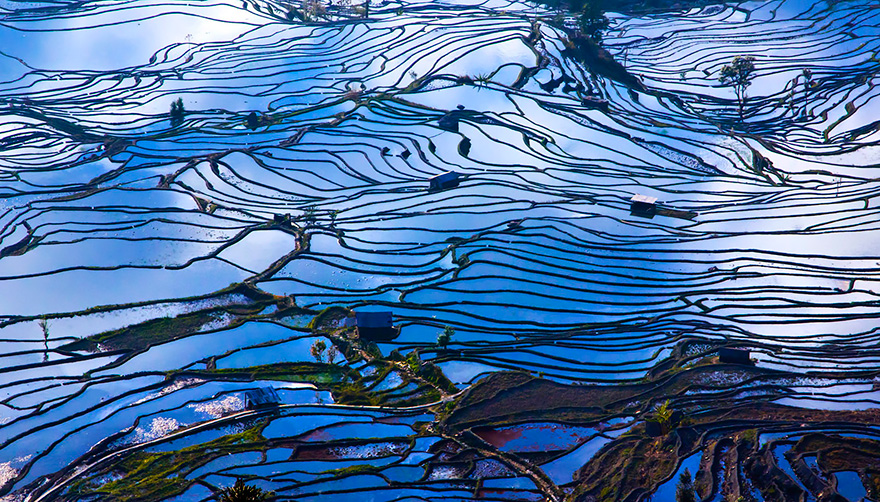 24 Entrancing Rice Fields That Resemble Broken Glass Terraced-rice-fields-16__880