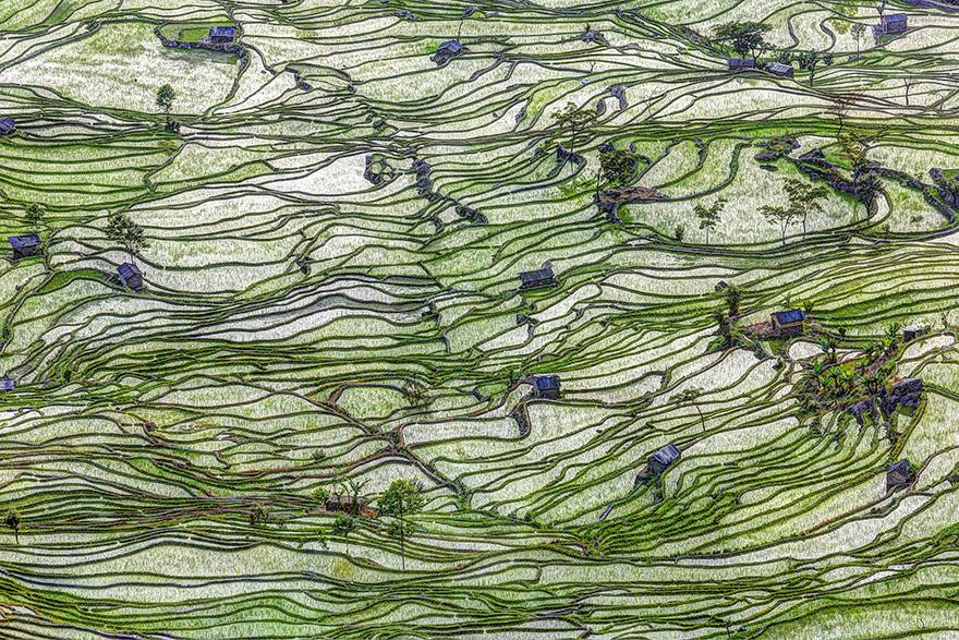 24 Entrancing Rice Fields That Resemble Broken Glass Terraced-rice-fields-17__880