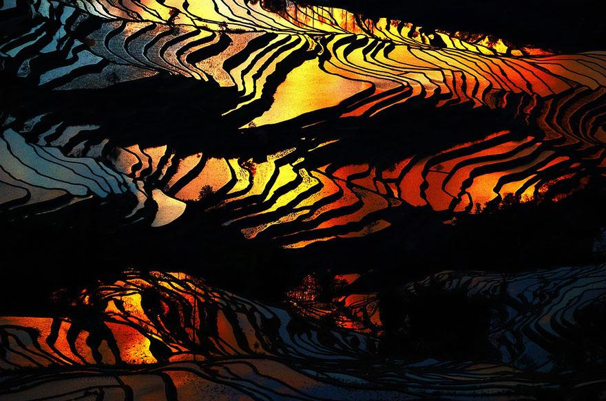 24 Entrancing Rice Fields That Resemble Broken Glass Terraced-rice-fields-19__880