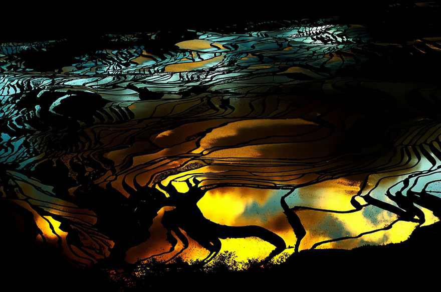 24 Entrancing Rice Fields That Resemble Broken Glass Terraced-rice-fields-22__880