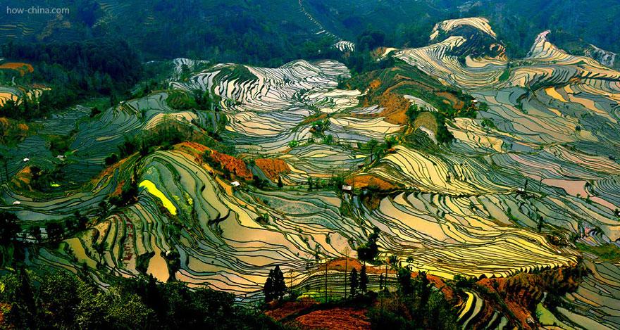 24 Entrancing Rice Fields That Resemble Broken Glass Terraced-rice-fields-26__880