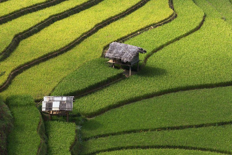 24 Entrancing Rice Fields That Resemble Broken Glass Terraced-rice-fields-27__880