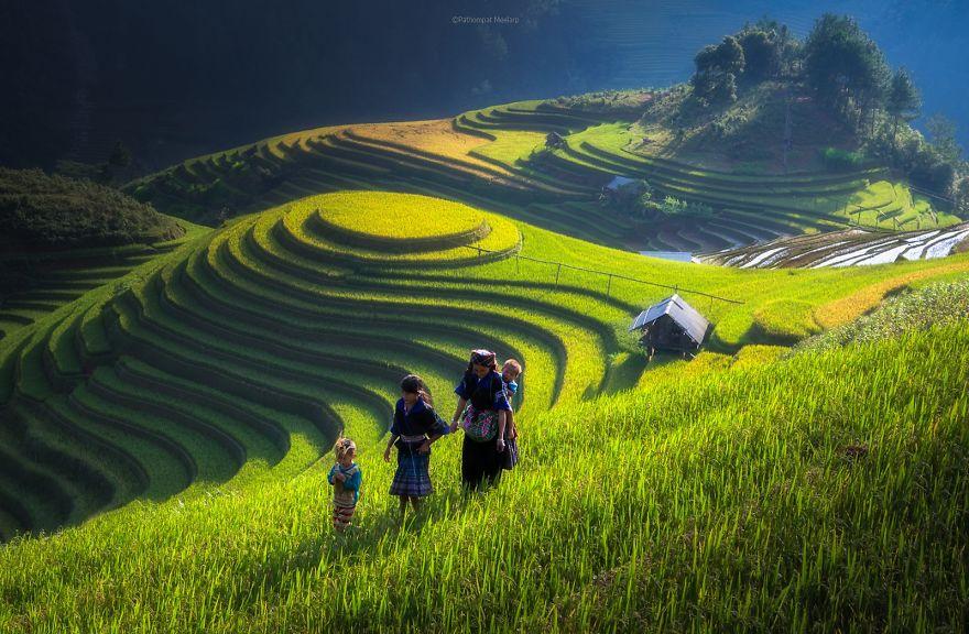 24 Entrancing Rice Fields That Resemble Broken Glass Terraced-rice-fields-28__880