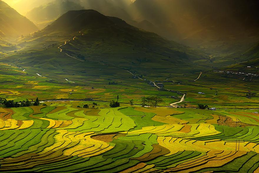 24 Entrancing Rice Fields That Resemble Broken Glass Terraced-rice-fields-5__880