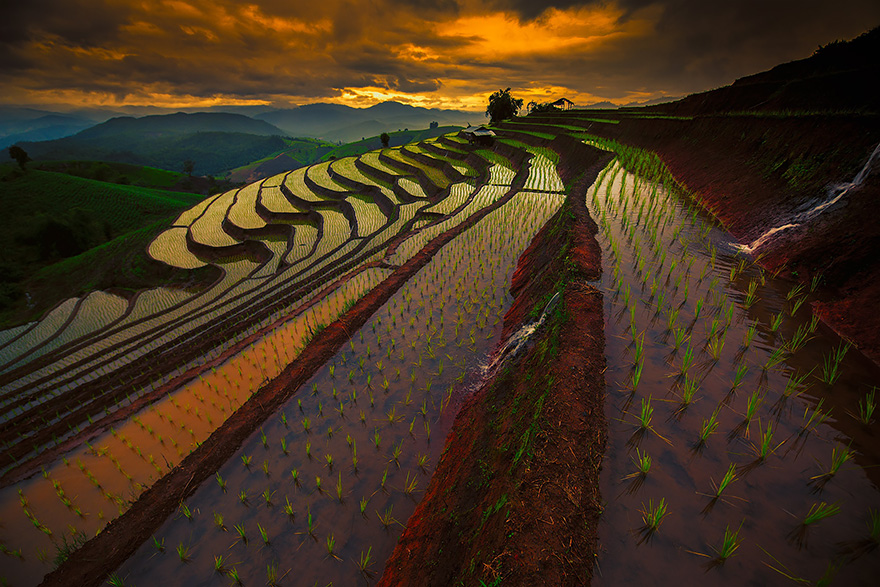 24 Entrancing Rice Fields That Resemble Broken Glass Terraced-rice-fields-7__880