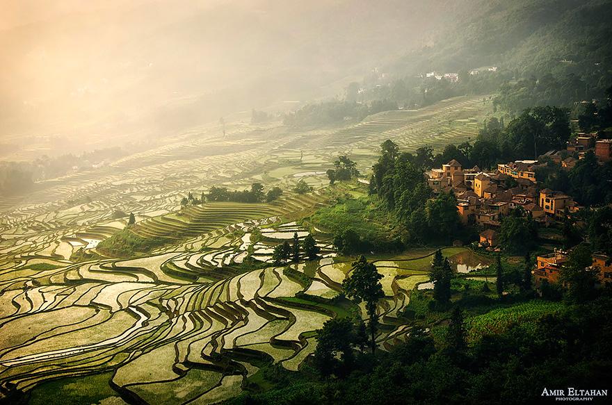 24 Entrancing Rice Fields That Resemble Broken Glass Terraced-rice-fields-8__880