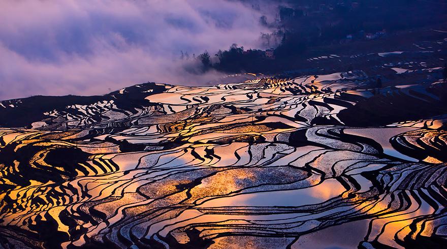 24 Entrancing Rice Fields That Resemble Broken Glass Terraced-rice-fields-9__880