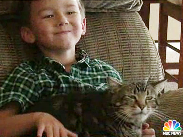 Cat Who Rescued Young Boy Wins Hero Dog Award Boy-cat2