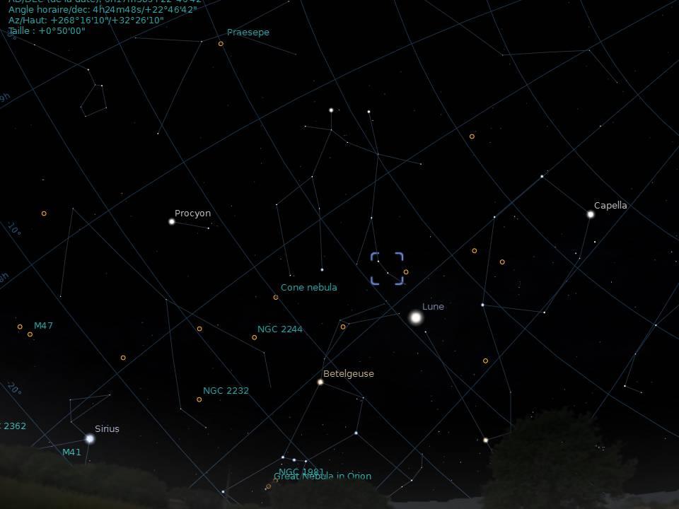une méduse à la lulu 80ED Lune.20122422043