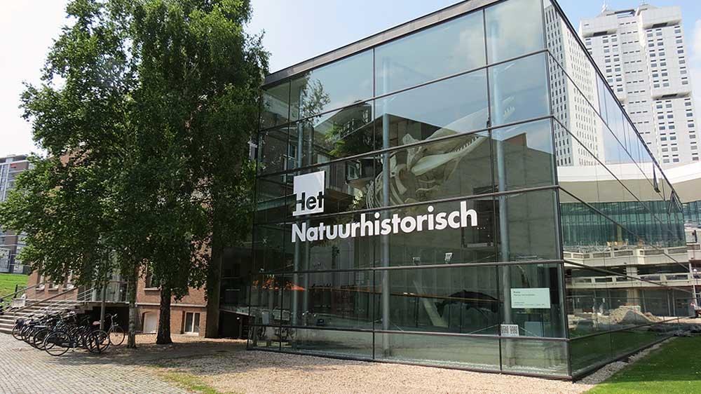 Najpoznatije svetske arhitekte - Page 3 Natuurhistorisch-museum-rotterdam