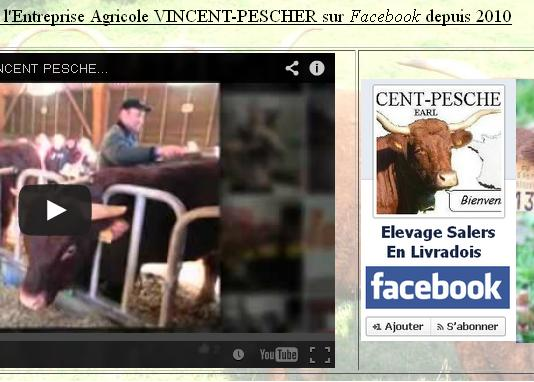 Vaches et Elevage Salers en Livradois - Page 2 1392546331EwNyWG