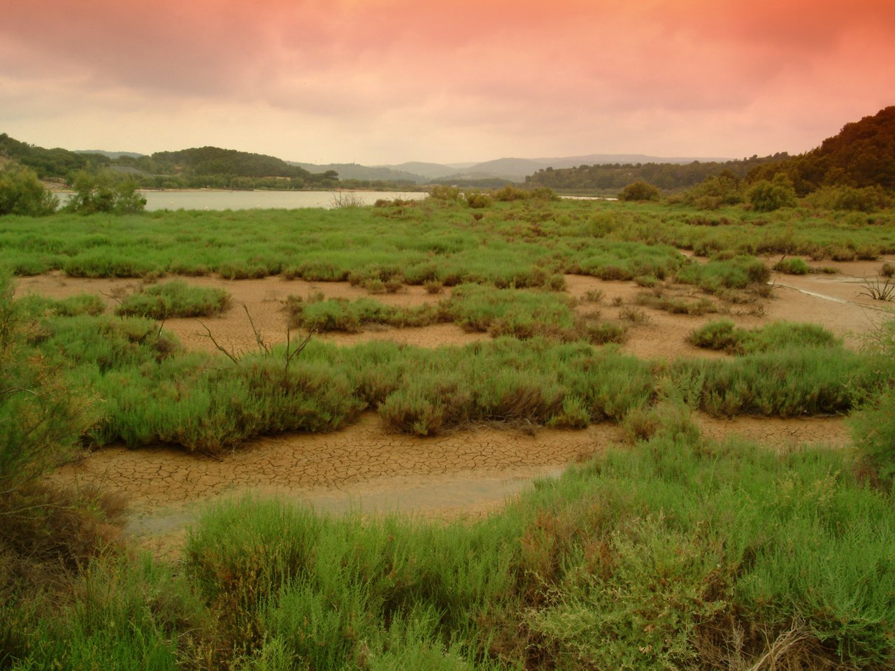 photo du lieu Edenpics-com_005-061-paysage-d-etang-desseche-et-ciel-rouge-France-Languedoc-Roussillon-Parc