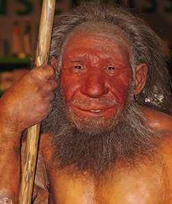 The Fifth Root Race—In Ascendancy Neandertaler_wikapedia