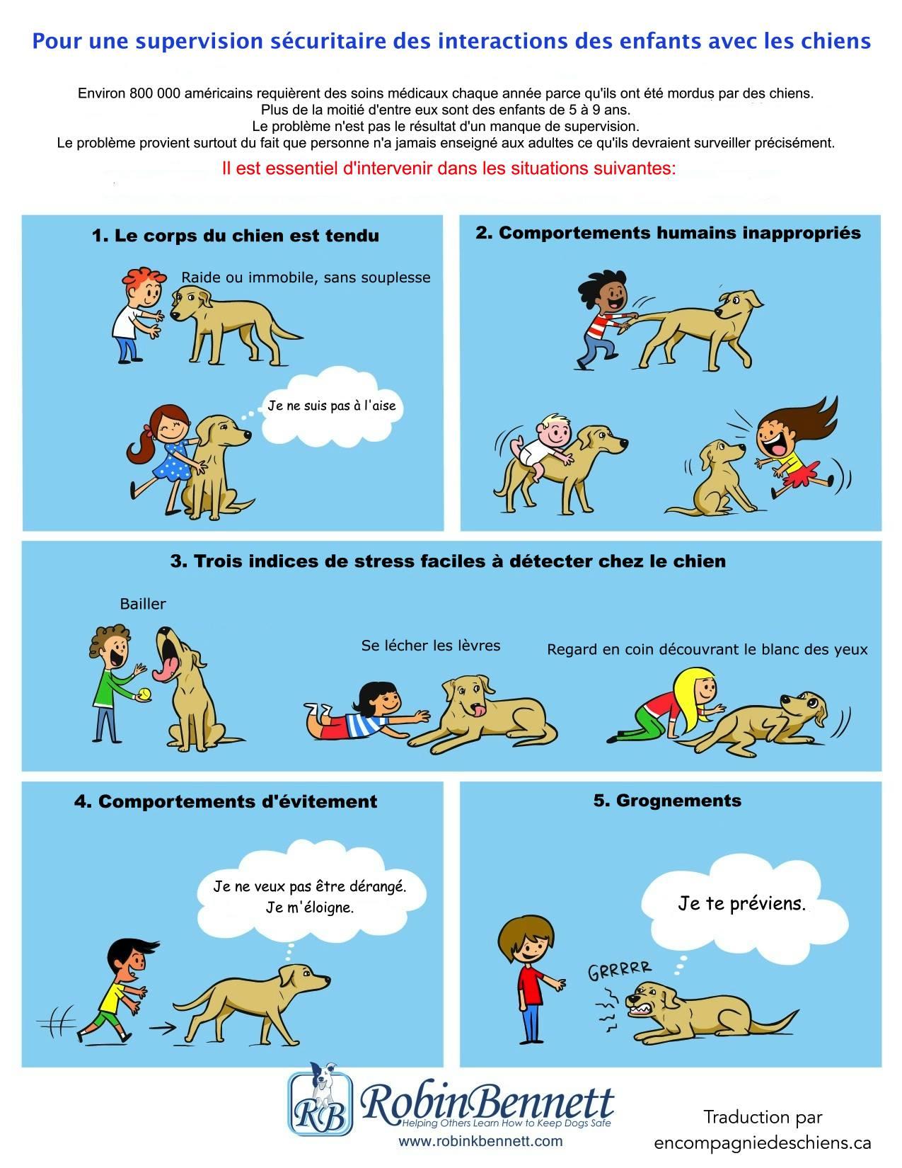 Adoption chienne d'élevage: problème avec les enfants - Page 3 Chien-et-enfant-officiel