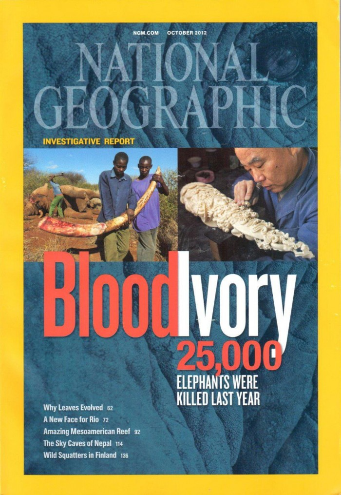 conversations with constance Nat-Geo-Blood-Ivory-cover-700x1015
