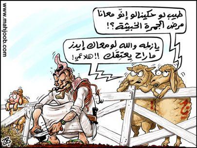 كاريكاتير مضحك - صفحة 9 Cat47350289369664