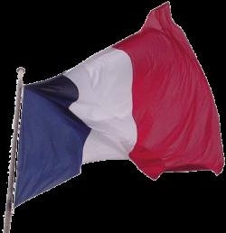 Bavardages incessants (Amusons-nous de flood) 250px-drapeau-francaisFrench_flag
