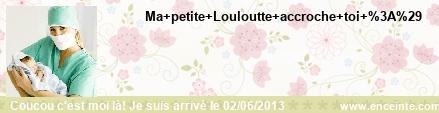 Pour les Juinettes 2013 - Page 4 Reglette-228343