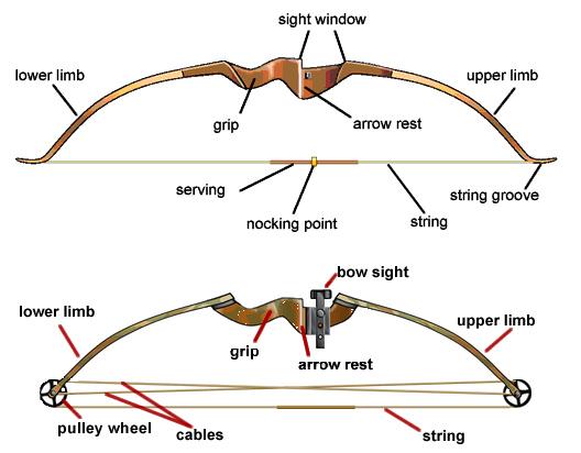 Jonathan Miller / Einar Skurgeson Recurve-vs-compund-bow