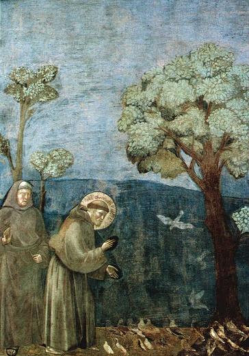 L'Ordre des Frères mineurs a 800 ans Francesco_a_giotto1
