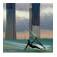 Windsurf en madrid