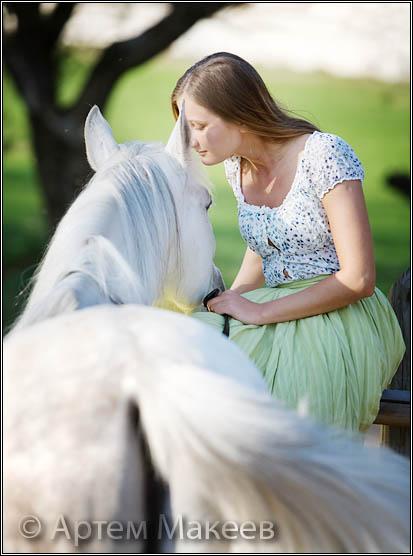 Death_on_horse parduodami zirgai 49f8738e