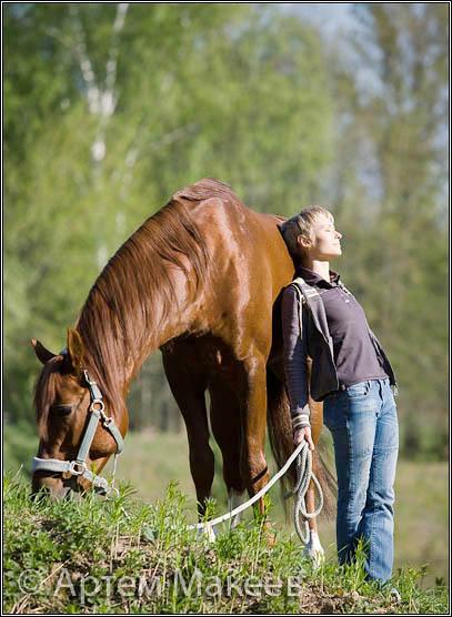 Death_on_horse parduodami zirgai 9b5ec859