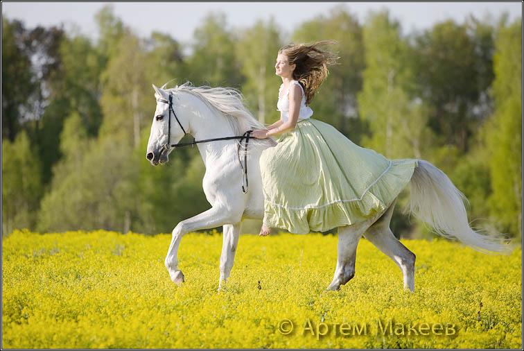 Death_on_horse parduodami zirgai C25ec225