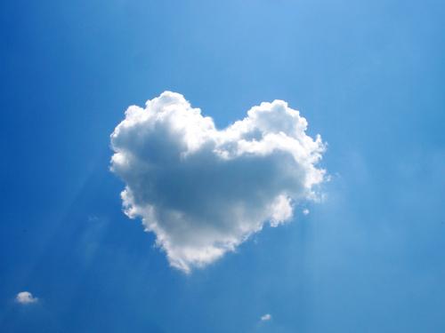 Foto Zemra - Faqe 2 Heart